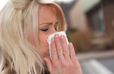 Prevent fall allergies by right advice