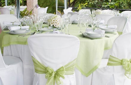 Arrange your party rentals from a certified service provider!